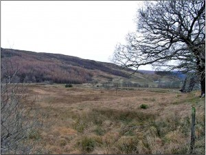 Building Plot 1 Ariundle, Strontian, PH36 4JB