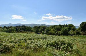 Plot & Land Savary, Lochaline, Morvern, PA80 5XU