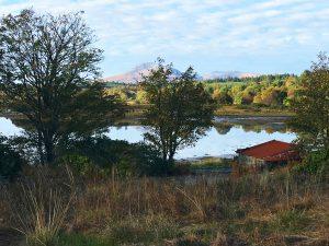 Plot at Lochdon, Lochdon, Isle of Mull, PA64 6AP